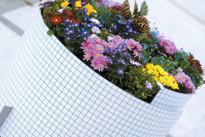 Jardinera Brasilia